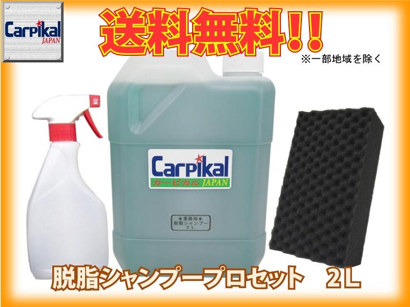 業務用 脱脂シャンプー2L PROセット
