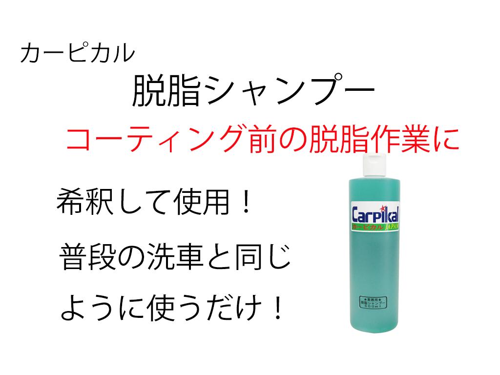 業務用 カーピカル 脱脂シャンプー(原液)